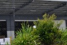 Angas Valley Wire fencing 20